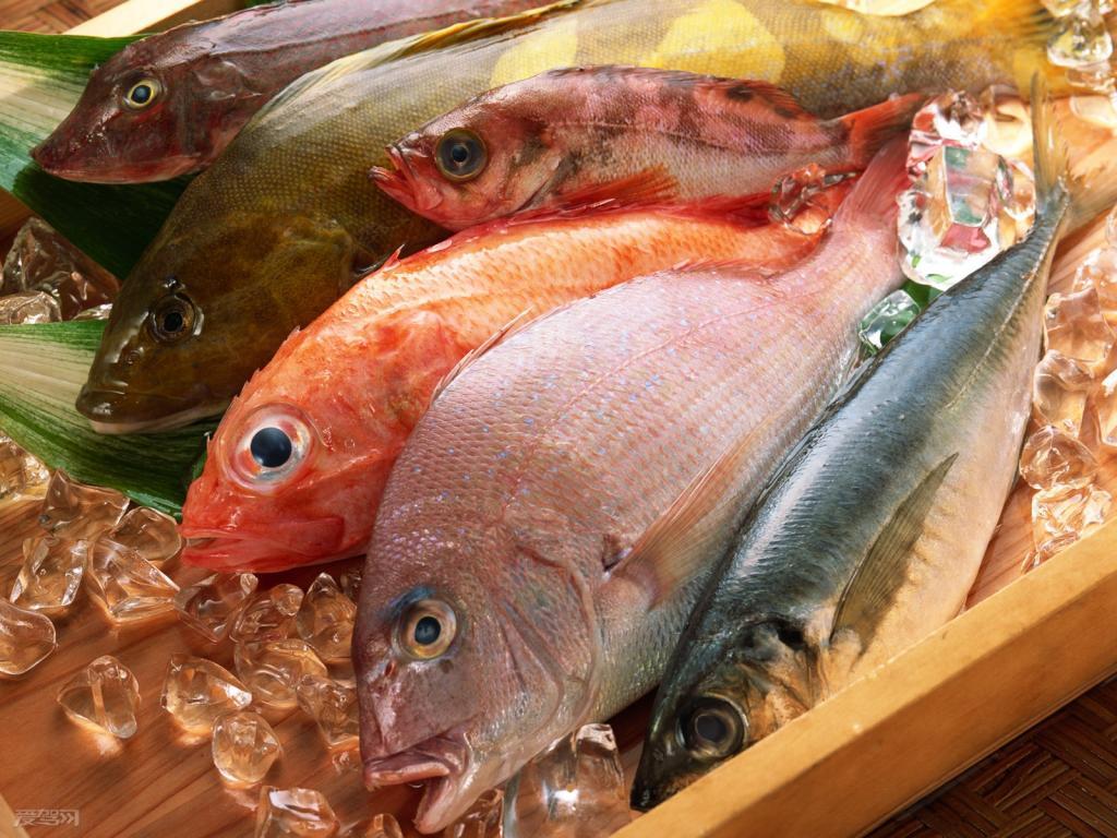 Tăng nội tiết tố nữ hiệu quả bằng omega -3