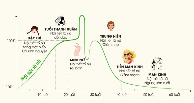 Biểu đồ về sự thay đổi nội tiết tố nữ rõ rệt qua từng độ tuổi