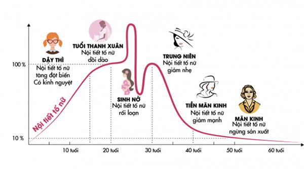 Biểu đồ tăng giảm nội tiết tố ở phụ nữ