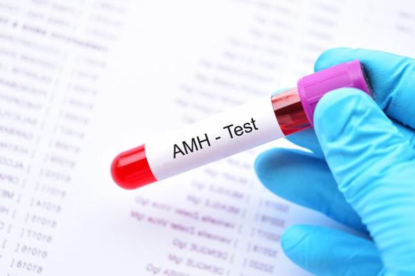 AMH là chỉ số giúp đánh giá khả năng sinh sản của buồng trứng